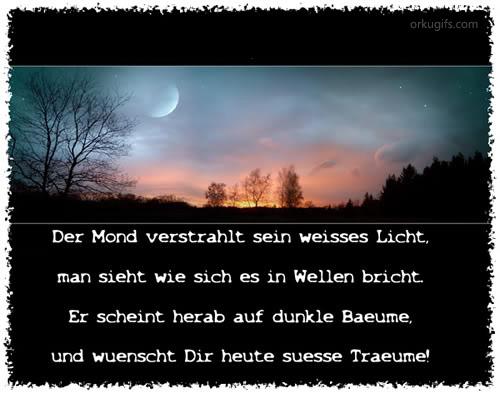 Der Mond verstrahlt sein weißes Licht,  man sieht wie sich es in Wellen bricht.  Er scheint herab auf dunkle Bäume  und wünscht dir heute süße Träume!