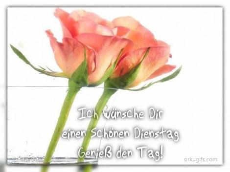 Ich wünsche Dir einen schönen Dienstag. Genieß den Tag!