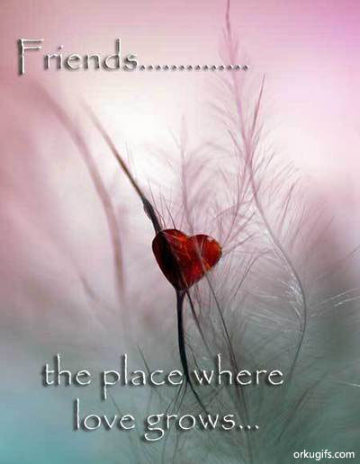 Friends... The place where love grows
