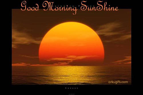 Good Morning SunshineGood Morning Sunshine Images